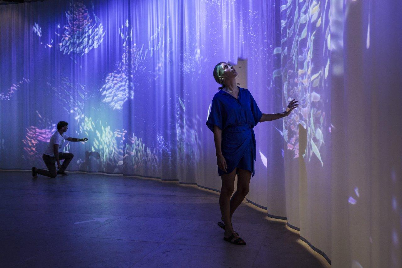Interaktive Projektion eines Fischschwarms im Foyer des Humboldt Labors
